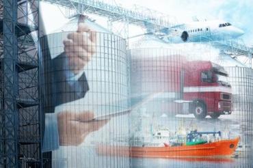 Logistics Consultation